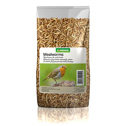 Image for Homebase Mealworms - 70g from StoreName