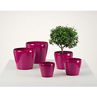 Fuchsia Indoor Plant Pot - 13cm