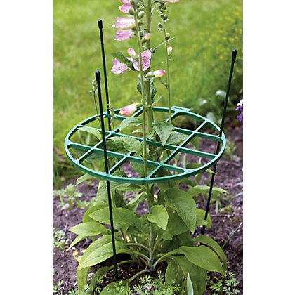 Image for Plant Support Ring - 30cm - 60cm from StoreName