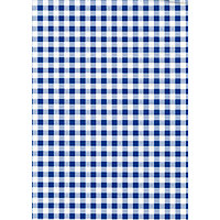 Fablon Sticky Back Plastic - Blue Gingham