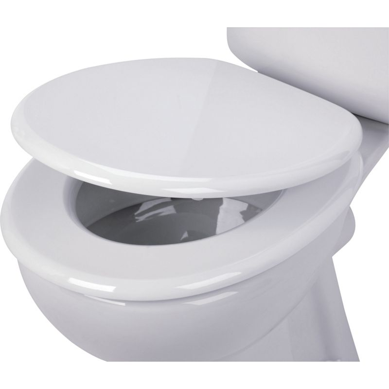 Stripe Toilet Seat Black And White