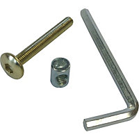EB bolts inc allen key M6 x 50mm pk4
