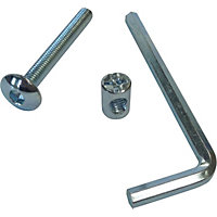 ZP bolts inc allen key M6 x 50mm pk4