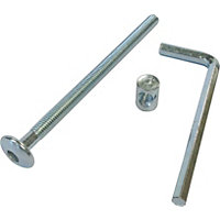 ZP bolts inc allen key M6 x 100mm pk 4
