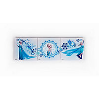 Elsa - Frozen Canvas Mini  - Set of 3