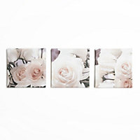 Cream Flowers Canvas  - Set of 3