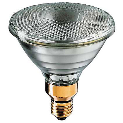 Image for Halogen PAR38 Spotlight ES 80W Bulb from StoreName