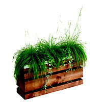 Rothley 'Lign Z' Contemporary Planter - 10L