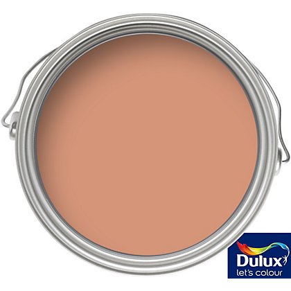 Image for Dulux Weathershield Toasted Terracotta - Smooth Masonry Paint - 5L from StoreName