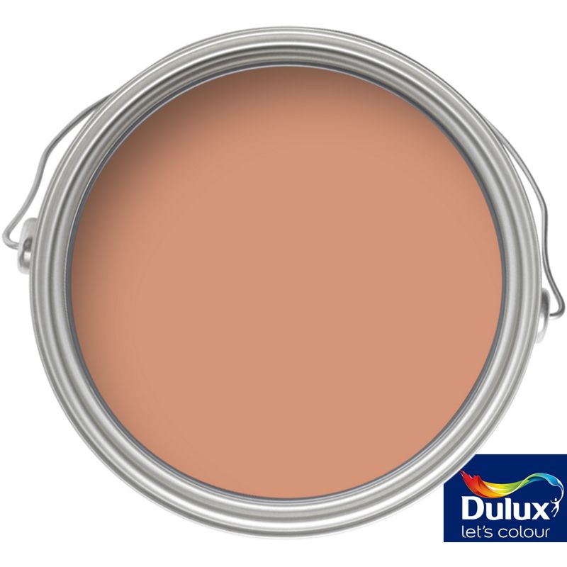 Sale On Dulux Weathershield Toasted Terracotta Smooth Masonry Paint 5l Dulux Now