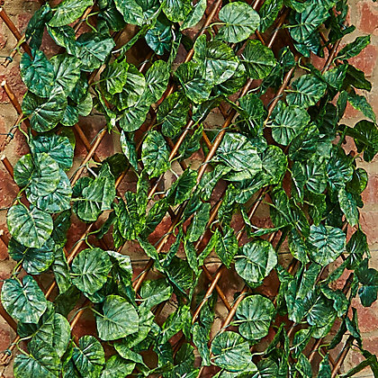 Image for Lime Leaf Trellis - 90cm x 180cm from StoreName