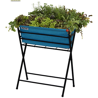 Image for VegTrug  - Poppy Black and Pale Blue from StoreName
