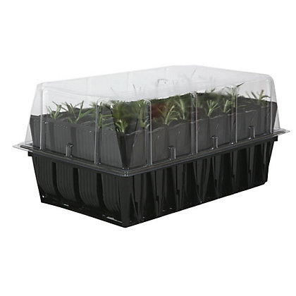 Image for Deep Rootrainer Propagator from StoreName