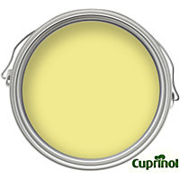 Cuprinol Garden Shades - Dazzling Yellow - 50ml