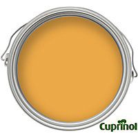 Cuprinol Garden Shades - Honey Mango - 50ml