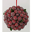 Frosted Cranberry Kissing Ball