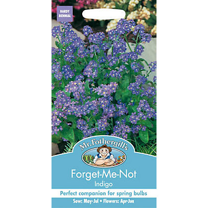 Image for Forget Me Not Indigo (Myosotis Sylvatica) Seeds from StoreName
