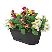 Garden Up Grande Wall Mounted Planter