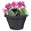 Garden Up Petite Wall Mounted Plant Pot