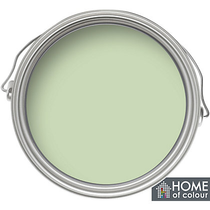Image for Home of Colour Onecoat Pale Green - Matt Emulsion Paint - 75ml Tester from StoreName
