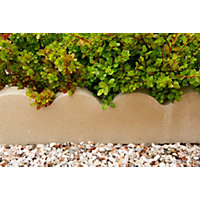 Stylish Stone Scalloped Edging 600mm - Grey