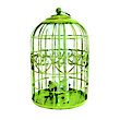 Peckish Squirrel Proof Seed Feeder - Green