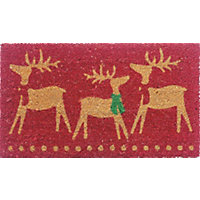 Assorted Coir Christmas Doormats