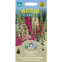Foxglove Foxy Mixed (Digitalis Purpurea) Seeds