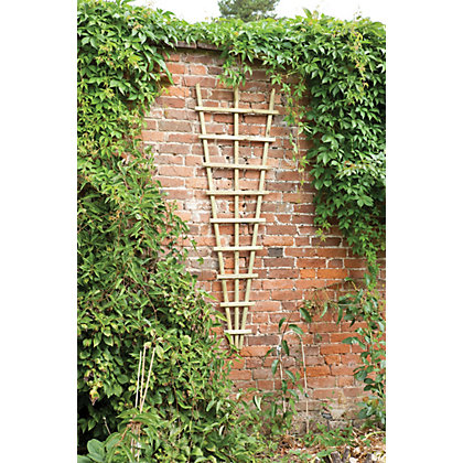 Image for Traditional Fan Trellis 180 x 60cm from StoreName