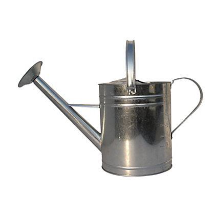 Image for Aqua Systems Galvanised Watering Can in Silver - 8L from StoreName