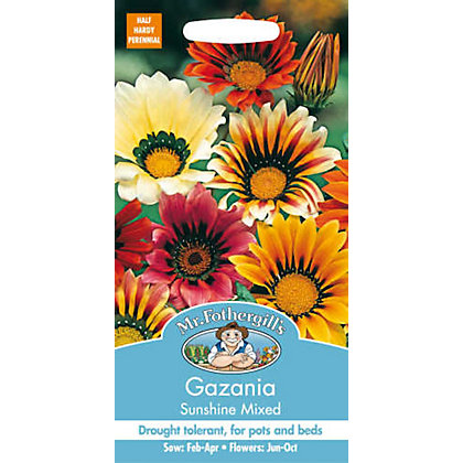 Image for Gazania Sunshine Mixed (Gazania Splendens) Seeds from StoreName