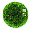 Artificial Topiary Grass Ball - 30cm