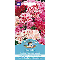 Godetia Azalea Flowered Mixed (Clarkia Amoena) Seeds
