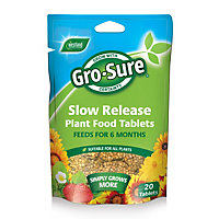 Gro-sure Slow Release Plant Food Tablets (Pack of 20)