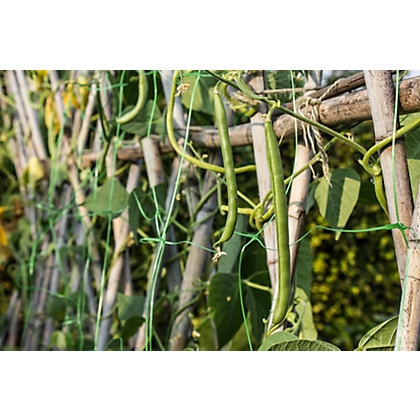Image for Sprout Garden Pea & Bean Net - 10x2m from StoreName