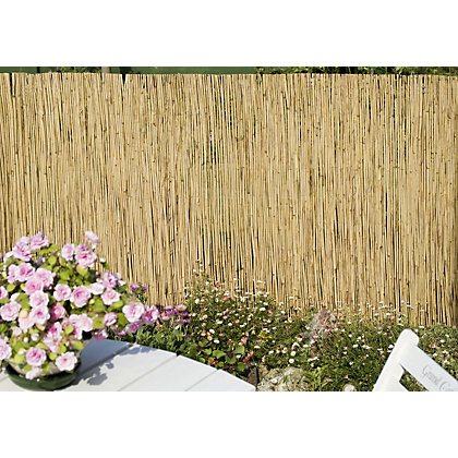 Image for Sprout Reed Garden Screening - 4x1m from StoreName