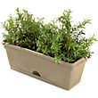 Garden Up Garden Herb Pot in Latte - 11cm