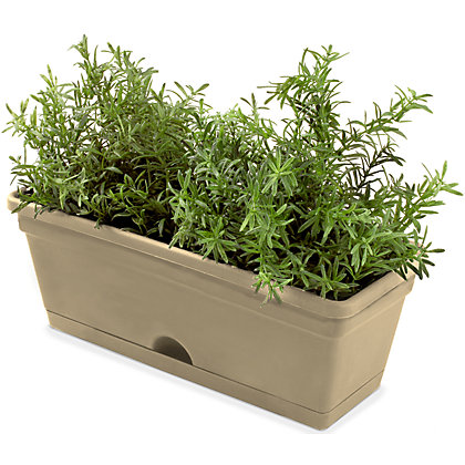 Image for Garden Up Garden Herb Pot in Latte - 11cm from StoreName