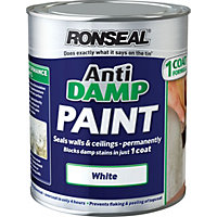 Ronseal One Coat Anti Damp Paint - White - 750ml