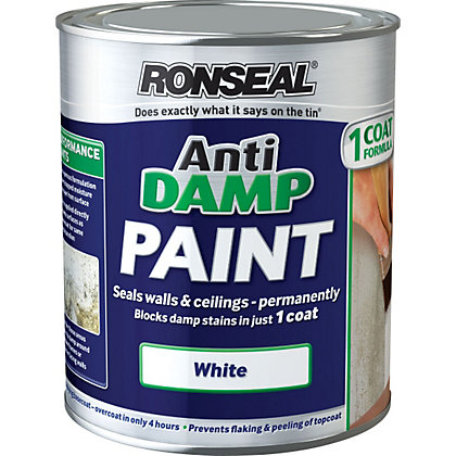 Image for Ronseal White - One Coat Anti-Damp Paint - 750ml from StoreName