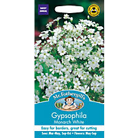 Gypsophilia Monarch White Seeds