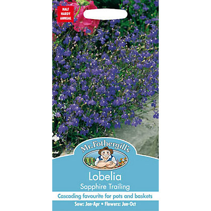 Image for Lobelia Sapphire Trailing (Lobelia Erinus) Seeds from StoreName