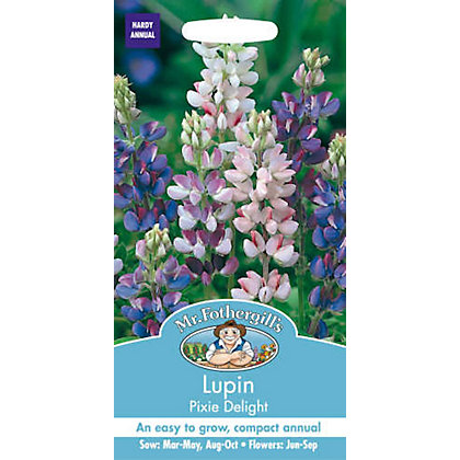 Image for Lupin Pixie Delight (Lupinus Nanus) Seeds from StoreName