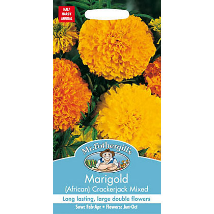Image for African Marigold Crackerjack Mixed (Tagetes Erecta) Seeds from StoreName
