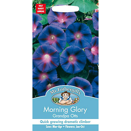 Image for Morning Glory Grandpa Otts (Ipomoea Purpurea) Seeds from StoreName