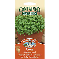 Cress American Land (Barbarea Verna) Seeds