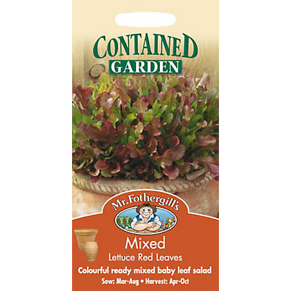 Image for Mixed Lettuce Red Leaves (Lactuca Sativa) Seeds from StoreName