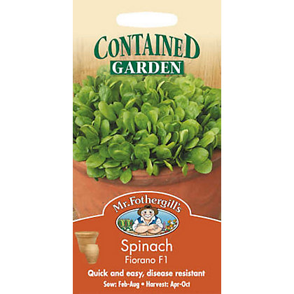 Image for Spinach Fiorano F1 (Spinacia Oleracea) Seeds from StoreName
