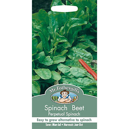 Image for Spinach Beet Perpetual Spinach (Beta Vulgaris) Seeds from StoreName