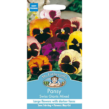 Image for Pansy Swiss Giants Mixed (Viola X Wittrockina) Seeds from StoreName